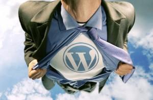 wordpress-kalitesi